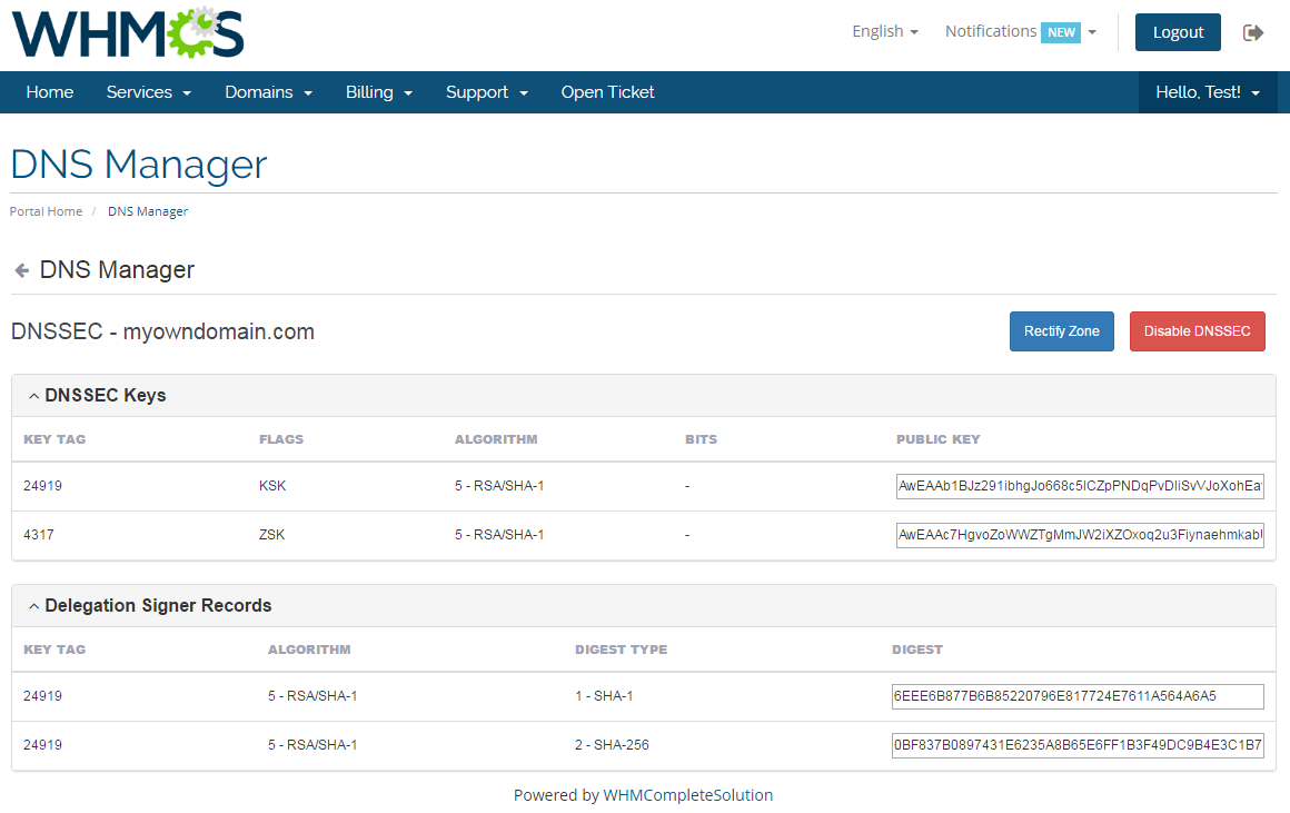 DNS Manager For WHMCS: Module Screenshot 7