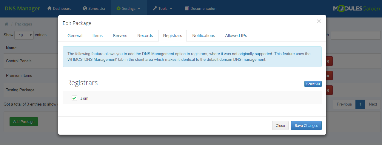 DNS Manager For WHMCS: Module Screenshot 23