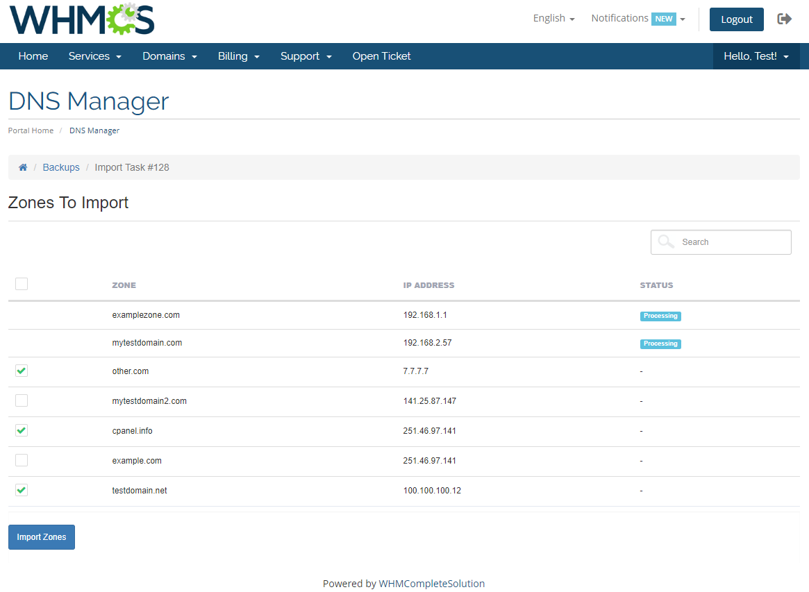 DNS Manager For WHMCS: Module Screenshot 9